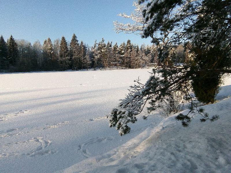 Talvikuva js_80_800